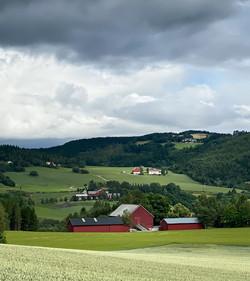 D12_LandsbrukslandskapInderøy2