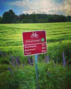 D5_Villmarksruta Halden til Trondheim ka
