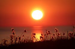 Nyksund_Solnedgang med myrull2