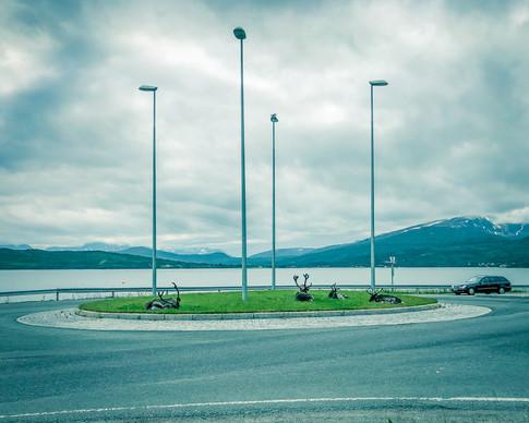 Reinsdyr i Tromsø by