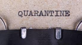 #Quarantine Life: No Shame