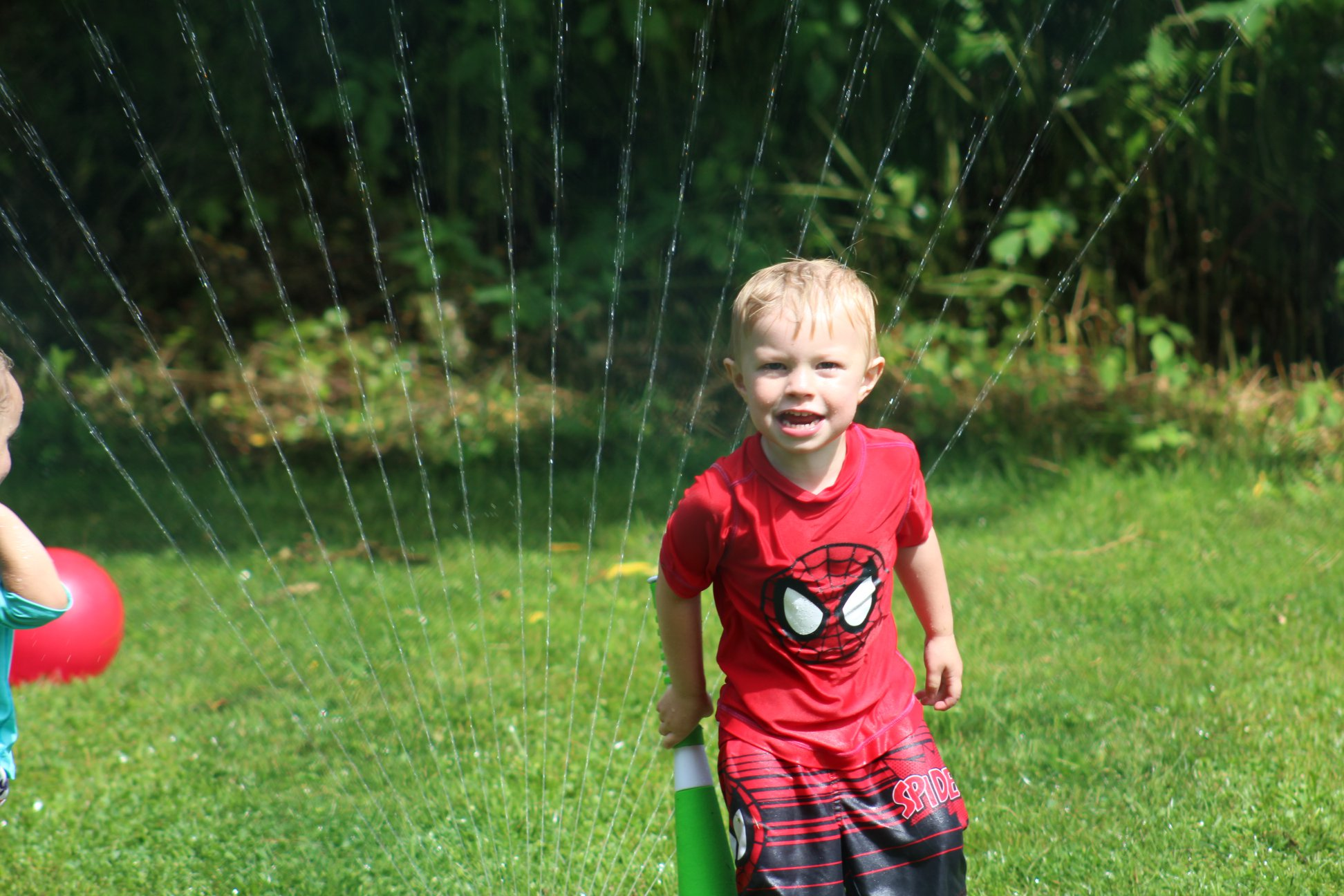 Spidey got water sprinkled