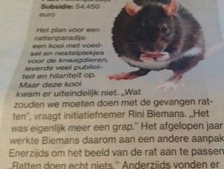 Het rattenparadijs is HOT