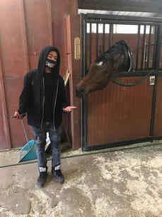 Youth and Horse