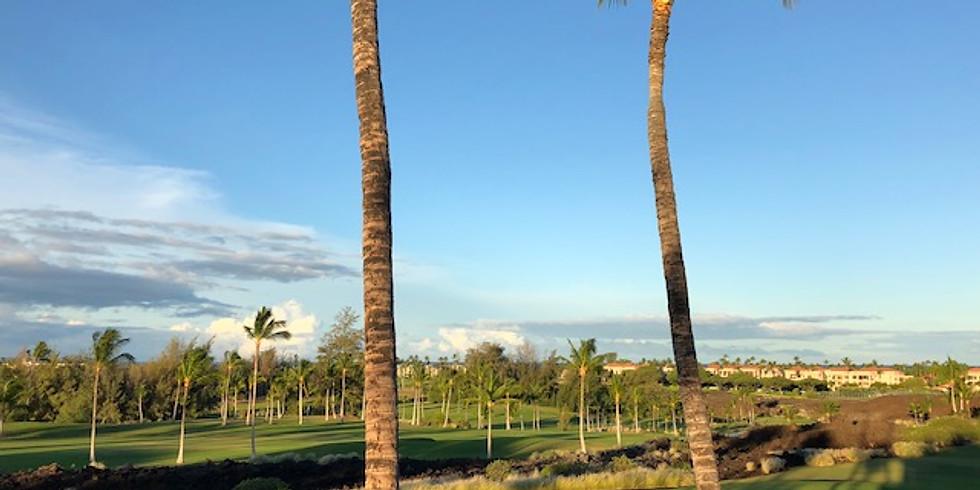 Goofing off in Hawaii (sort of)...