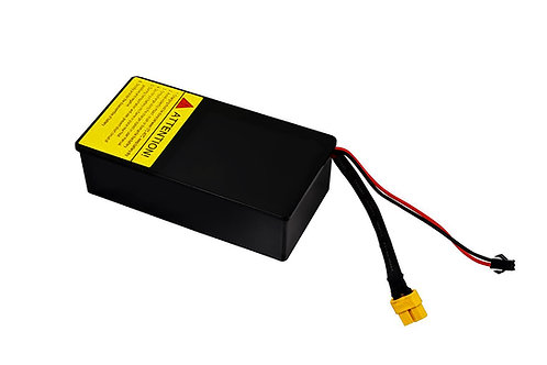Mini Flash Replacement Battery