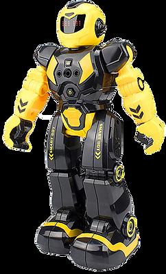 Cargooy RC Robot