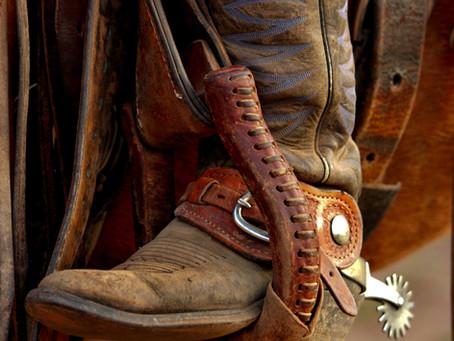 Pony Express Yarns