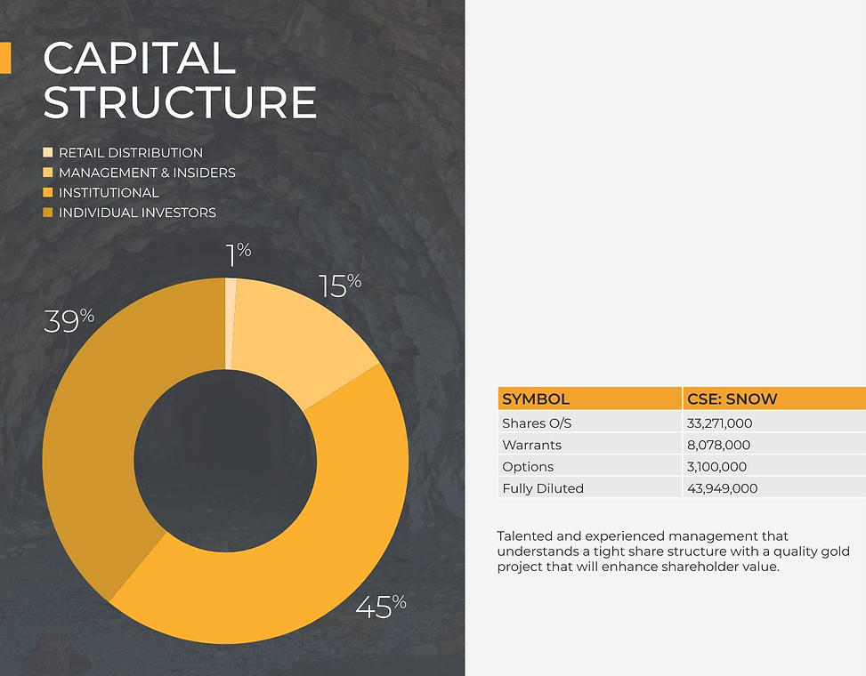 SnowyOwlGold_Capital_Structure-pdf (1).png