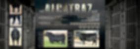 Alactraz handout layout inside.jpg