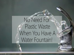 No Need For Plastic Waste When You Have A Water Fountain