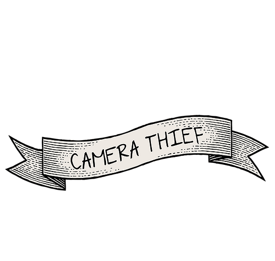 Camera Thief Heart Logo Banner 2.png