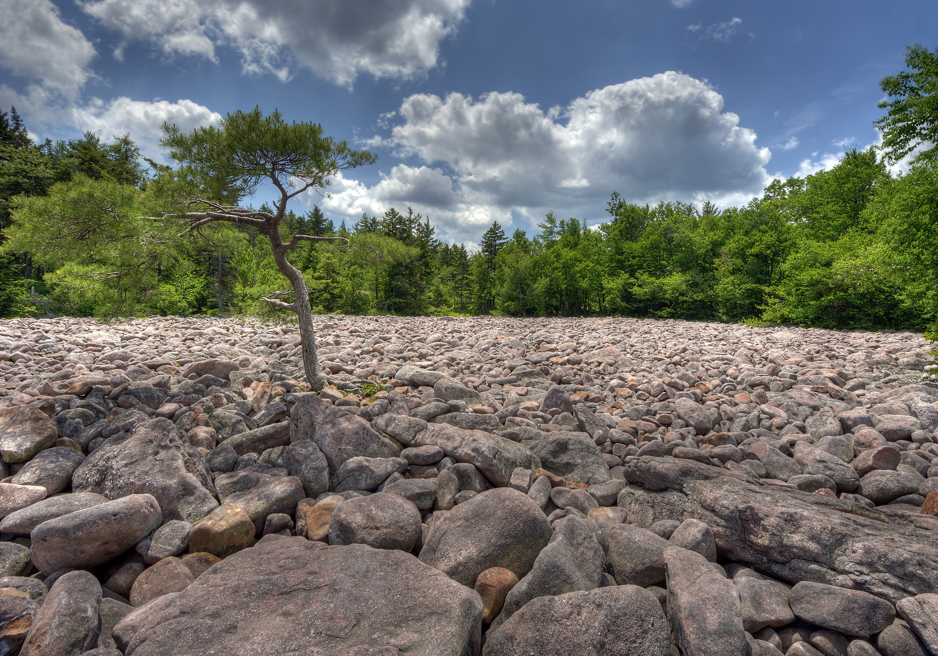 Home-Rocks2