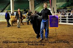 Hedy's 2013 Win