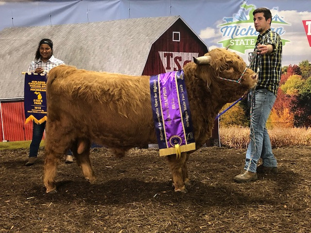 Grand Champ at the Michigan State Fair 2