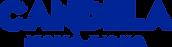 Candela Logo Blue Glass.png