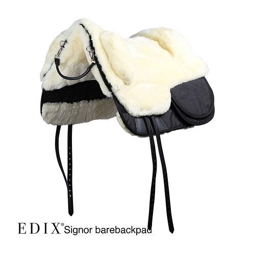 EDIX Signor Bareback Pad