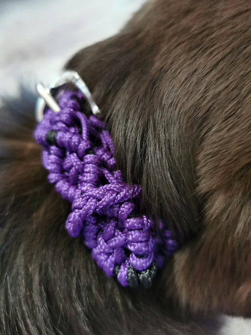Fully Braided 'Shield' Braid Dog Collar