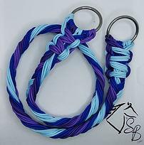 blue and purple.jpg