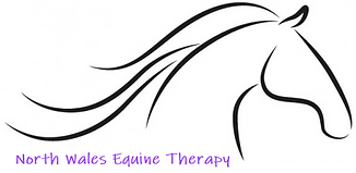 north wales equine therapy logo BOLD and