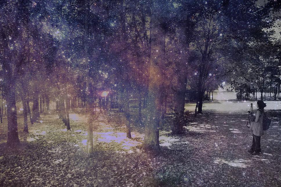 Draconis ©hmejza.jpg