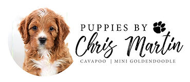 Chris Puppies Logo.jpg