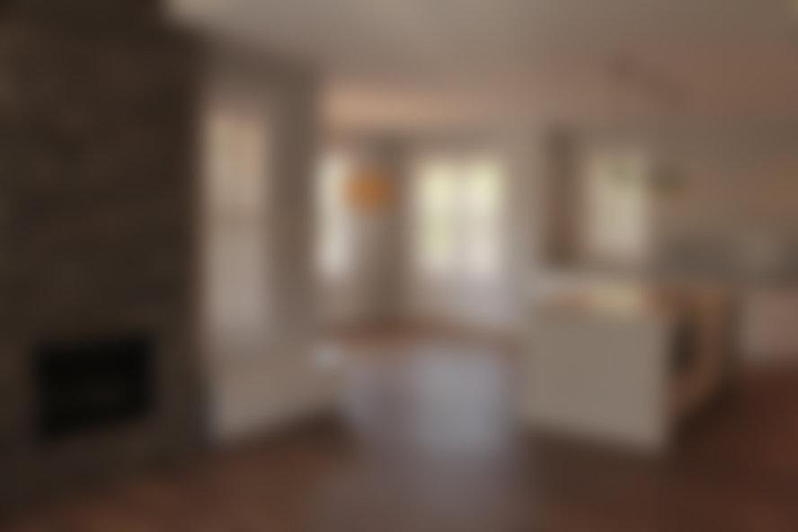 IMG_2239_blurred.jpg