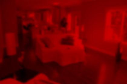 IMG_6302_blurred.jpg