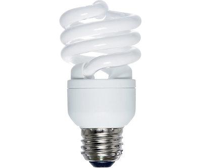 AgroBrite CFL 13W/6400K