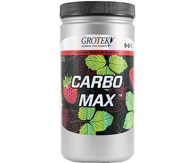 Carbo Max 700 g