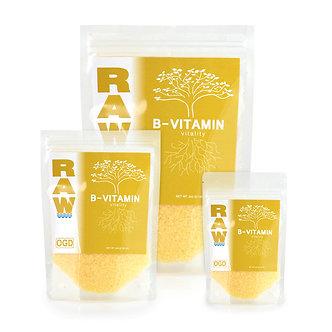 RAW B-Vitamin 8 oz (6/cs)