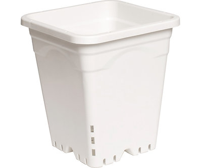 "9""x9"" Square White Pot, 10"" Tall, 24 per case"