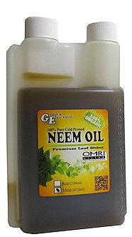 16 oz Neem Oil