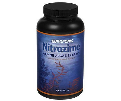 Nitrozime, 16 oz