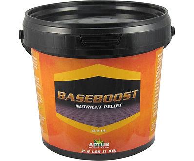 Aptus Baseboost 1Kg