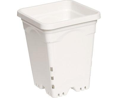 """6""""x6"""" Square White Pot, 8"""" Tall, 50 per case"""