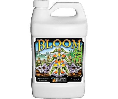 Bloom 1 gallon