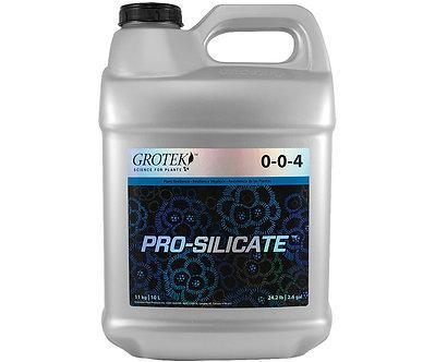 Pro Silicate 10L