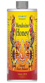 Mendocino Honey Qt