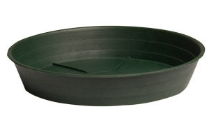 """Green Premium Saucer 16"""", pack of 10"""