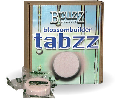 B'Cuzz Blossom Builder Tabzz, case of 18