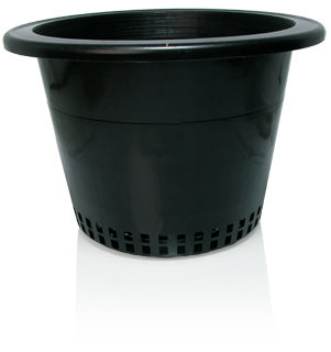 "10"" Pot with Mesh Bottom, bag of 50"