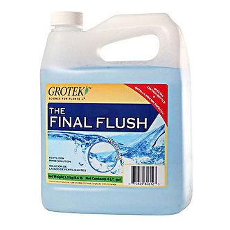 Final Flush Blueberry 4L