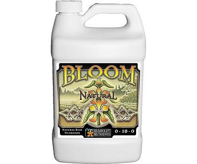 Bloom Natural 32 oz.