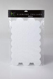 35 White Cloning Collars