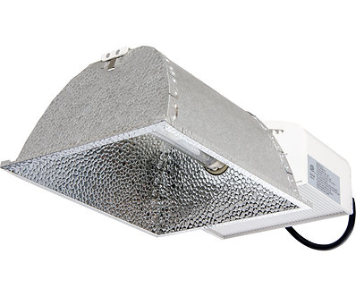 ARC CMH 315W 347V Wieland Plug w/Lamp (4200K) System