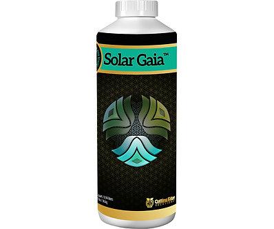Solar Gaia