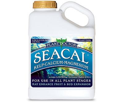 SPO SeaCal Gal (4/cs)