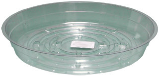 Clear 8 inch Saucer, pack of 25