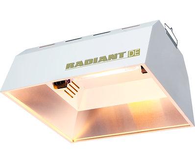 Radiant Ref DE Unit (24/plt)